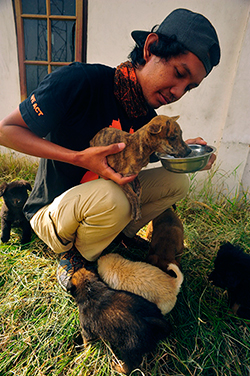 Mambo enjoys some food and water with the aid of shelter staff. ©IFAW-COP
