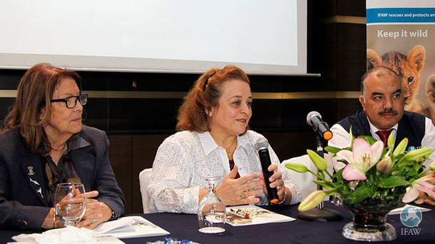 IFAW Honorary Board member, her excellency Princess Alia bint Al-Hussein encourages participants at the Amman meeting to unify on CITES issues.