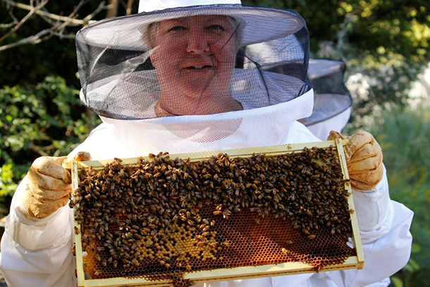 The author with one of the colony trays.
