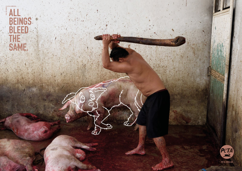 In abattoirs, pigs and cows are hoisted upside down by their back legs and their throats are cut, even though they often haven't been properly stunned. If you aren't already repulsed by that fact, would it shock you if the victim were instead a dog? Shocking new PETA ads aim to challenge viewers to question why they love some animals but eat others.