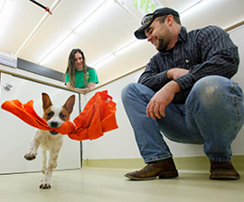 A New Route to Adoption: Instead of Selling Dogs, Puppy-Friendly Pet Stores Offer Adoptable Shelter Animals