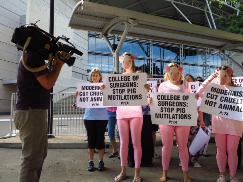 RACS Protest PETA