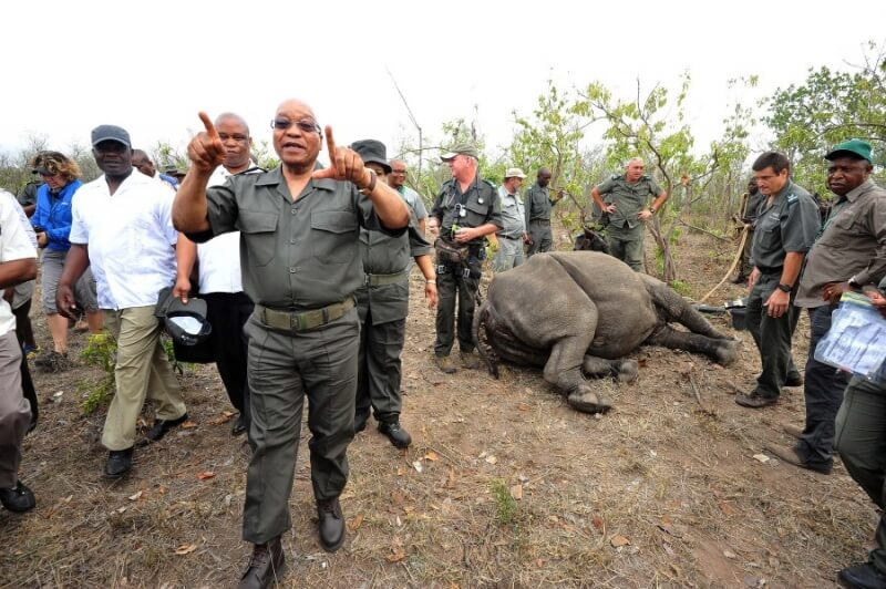 President Jacob Zuma leads Anti-Rhino Poaching Awareness Day, 1 Nov 2015