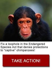 Take action!