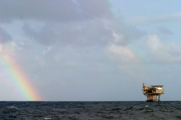 The expansion of offshore drilling does not bode well for critical habit.