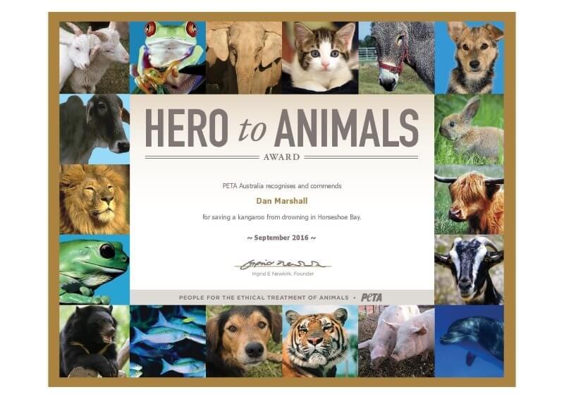 aus_hero-to-animals_dan-marshall-page-001
