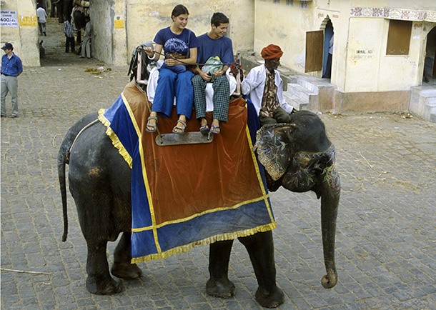 In this file photo, German tourists ride on top of an elephant that will carry them to and from the famous Amber Fort Jaipur in India.