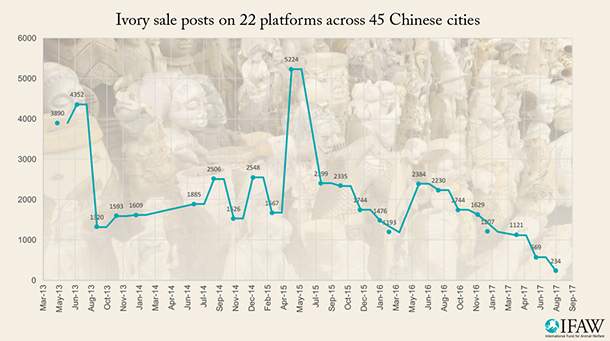 Over the past 12 months, the price of ivory has dropped dramatically in China and across Asia.