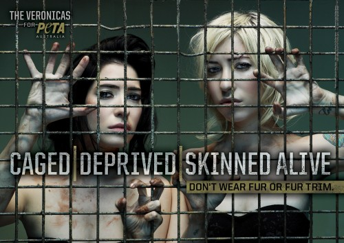the veronicas peta ad
