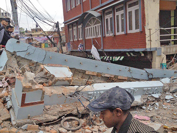 Disaster relief team readies to assess and help animals in Nepal