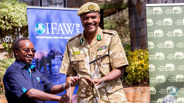 The author hands over one of the satellite collars to KWS Director General Kitili Mbathi.