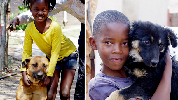 Those people living in the web of impoverished settlements around Johannesburg often love their animals deeply, and will jump at a chance to care for them and get them vaccinated against disease. Where a family has access to CLAW's services, you can see it in the glossy coats, wet noses and happy faces – human and animal.
