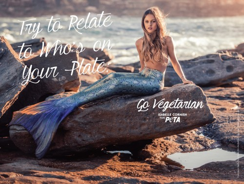 Isabelle Cornish_Try to Relate Ad_FIN300