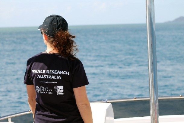 You can work alongside world-class scientists as they study humpbacks in Australia.