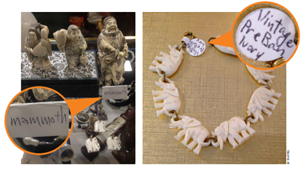 pieces of ivory sold in united states marketplaces
