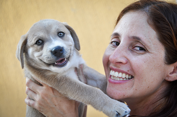 How much do animals contribute to happiness?