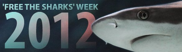 'Free the Sharks' Week 2012