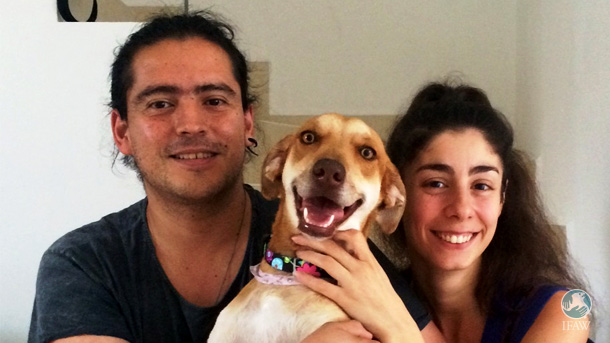 Kiki and her adoptive family, who had recently moved to Playa del Carmen and wanted a canine companion for their new life there.