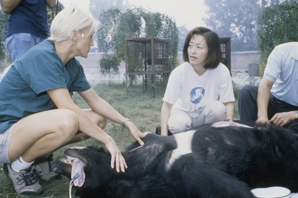 Grace has devoted her career to animal welfare ever since she saw Chu Chu, an Asiatic Black Bear, rescued from a life in cruel captivity.