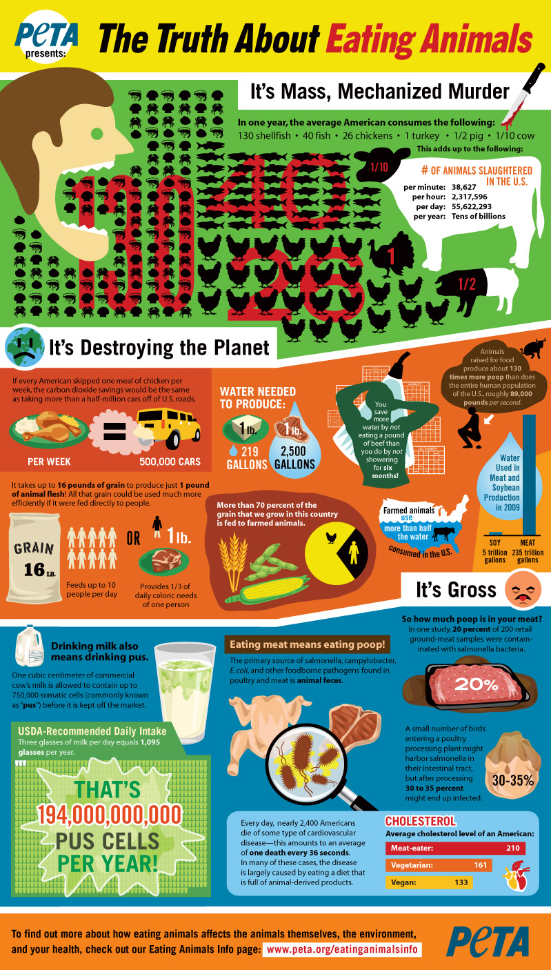 peta_infographic-truthabouteating