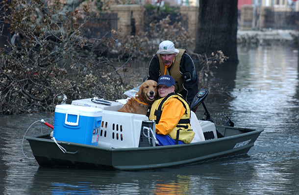 Animal rescuers with dog in boat in Katrina flooding.