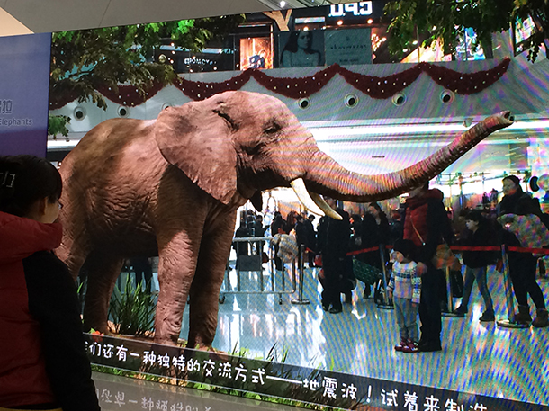 Recently a virtual elephant, named Laura, invited shoppers to play at a Beijing shopping mall.