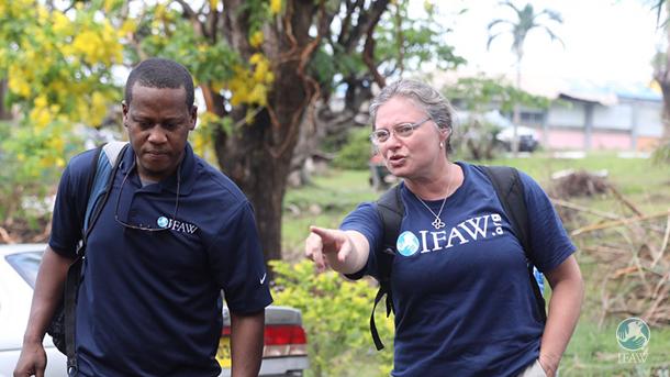 kelvin alie wildlife rescue dominica ifaw hurricane maria