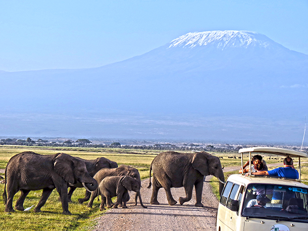 Tourists on safari watch a family group of elephants as they cross a road with Mount Kilimanjaro in the distance.