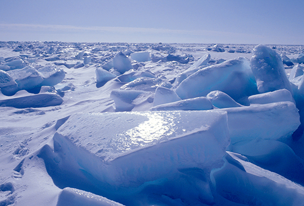 Sir David Attenborough was inviting me to visit Antarctica with him.