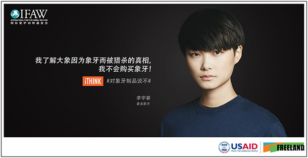 """Named """"Asia's Hero"""" by Time magazine in October 2005, Li Yuchun has made it her personal mission to speak up against elephant poaching and the ivory trade—the root cause of the slaughter."""