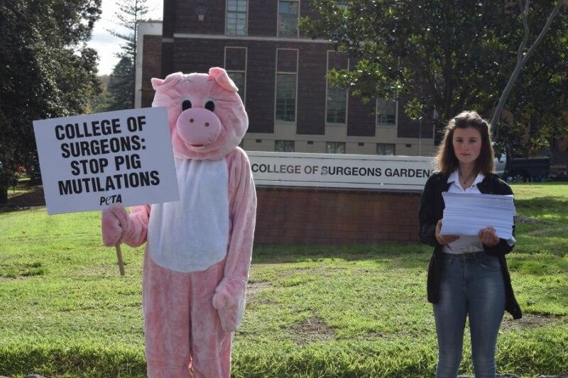 PETA RACS Petition Delivery